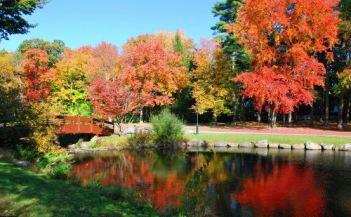 Wampus Lake