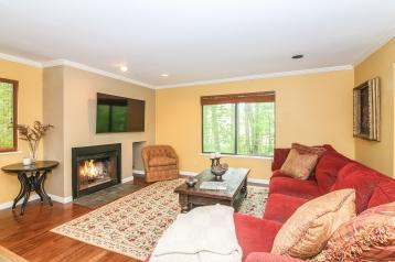 005-Living_Room-4223753-medium